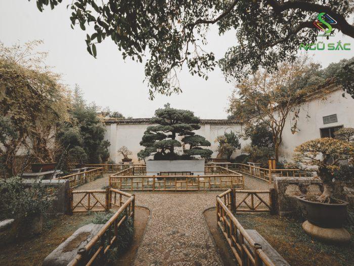 Lối đi vào sân vườn sang trọng