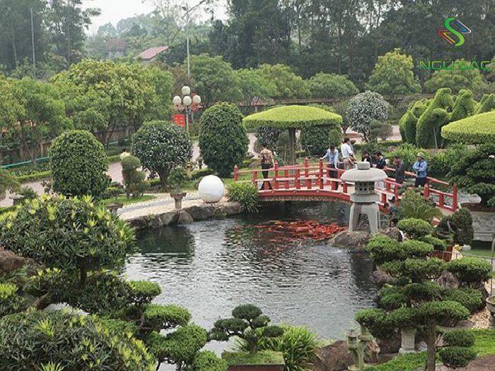 Một gốc tiểu cảnh sân vườn