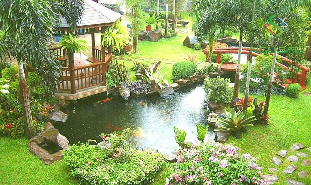 Thiết kế sân vườn đồng quê Việt