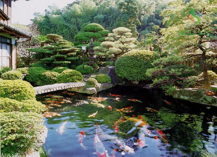 Mẫu thiết kế sân vườn Nhật Bản