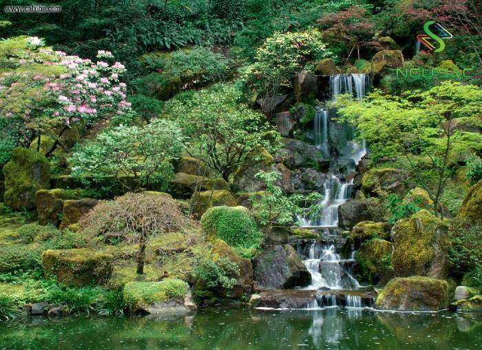 Sân vườn Nhật Bản với thác nước thiên nhiên