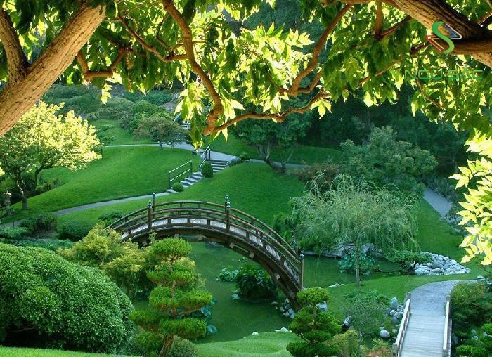 Hình ảnh đồi núi trong sân vườn