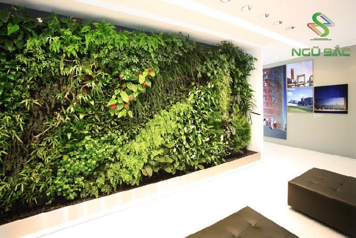 Phòng khách xanh mát với tường đứng