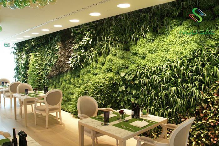 Các cửa hàng nổi bật với tường cây