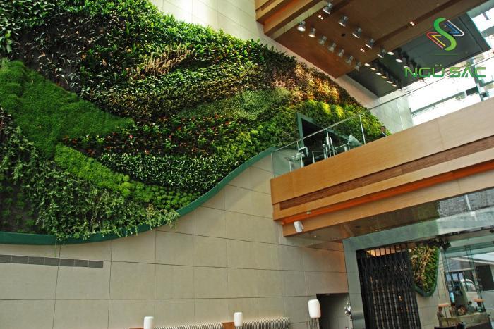 Mãng tường xanh lớn ở các trung tâm thương mại