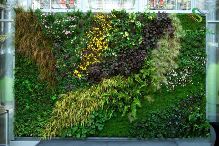 Thiết kế tường cây xanh