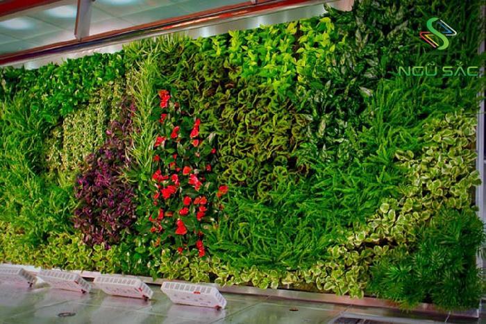 Mẫu tường cây xanh
