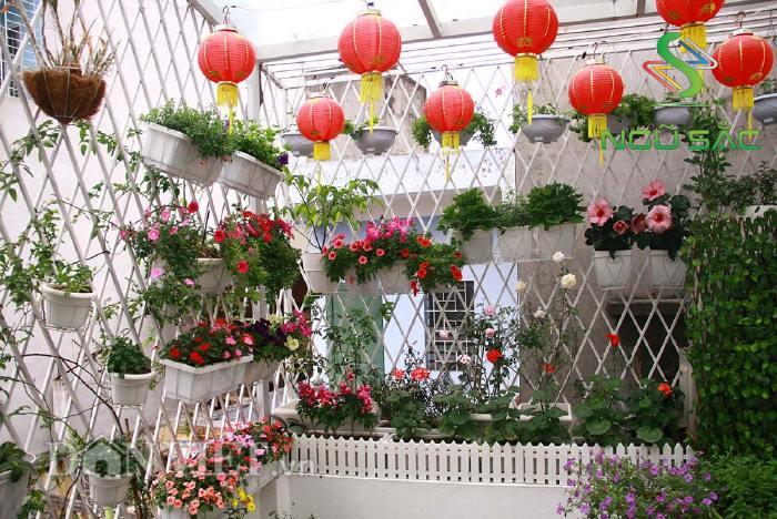 Trang trí sân vườn với hoa và đèn
