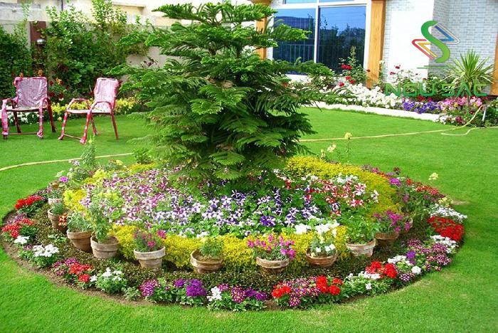 Bồn hoa rực rõ trong sân vườn