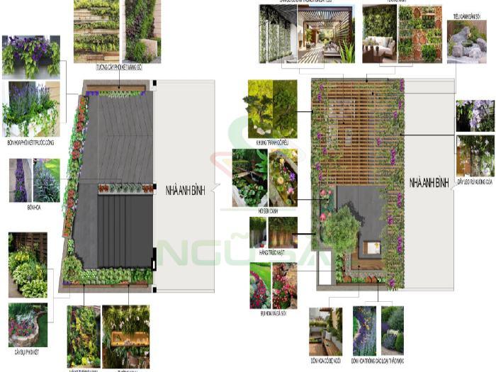 Bản vẽ 2D tiểu cảnh sân vườn
