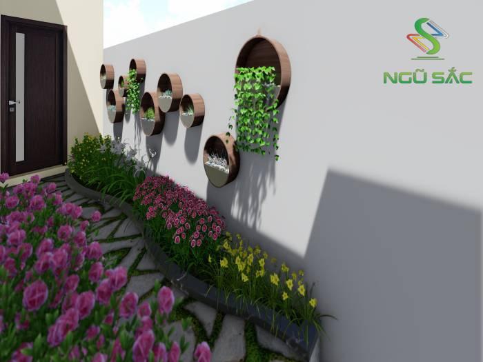 Cây treo tường và trồng sân vườn