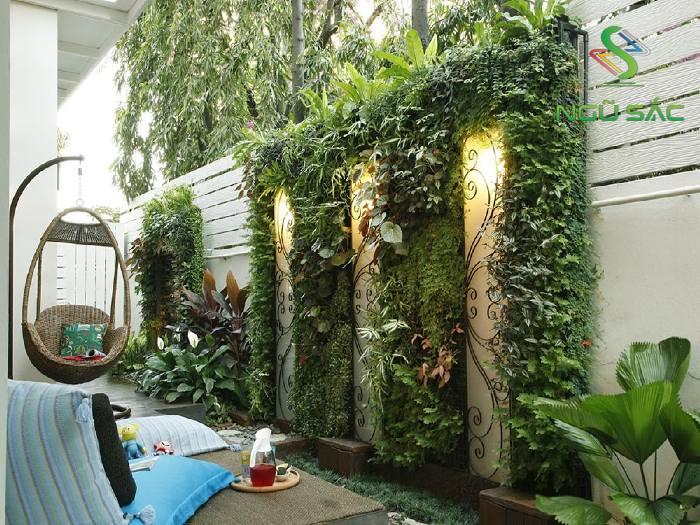 Tường cây xanh sân vườn