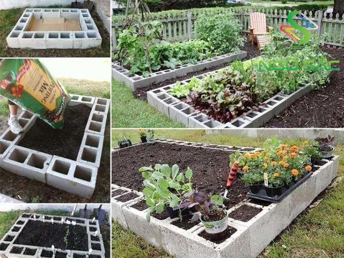 Tự tạo bồn trồng hoa bằng xi măng