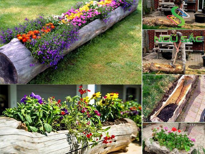 Làm bồn trồng hoa từ khúc cây gỗ