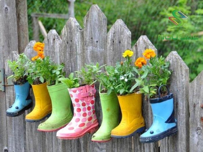 Trồng hoa vào đôi ủng cũ