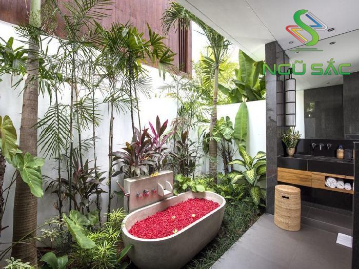 Thiết kế nhà tắm phong cách nhiệt đới