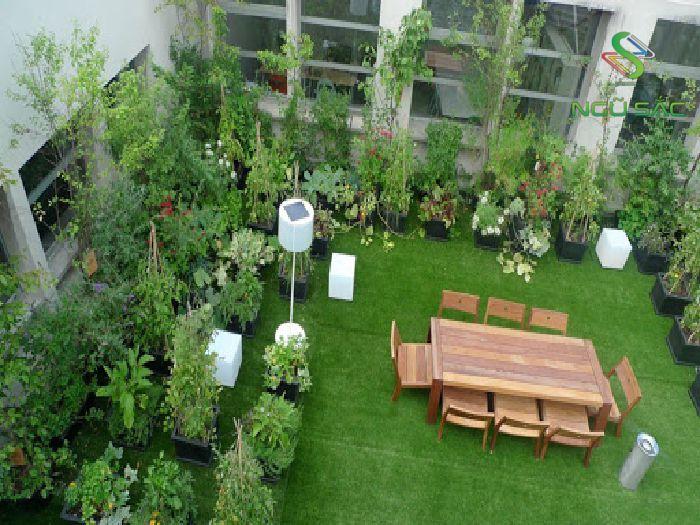 Sân vườn nhỏ tầng thượng
