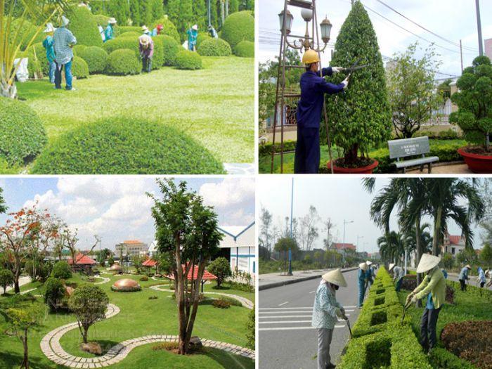 Dịch vụ bảo trì - chăm sóc sân vườn