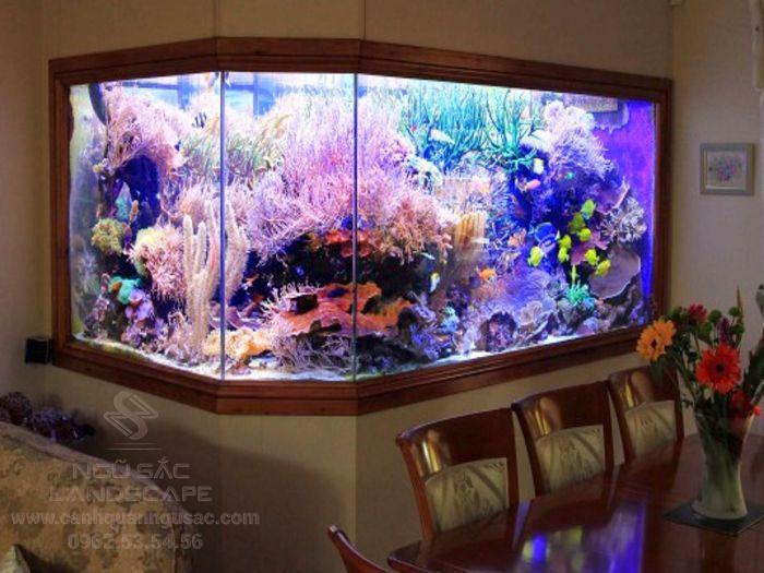 Đơn vị thiết kế hồ cá cảnh chuyên nghiệp