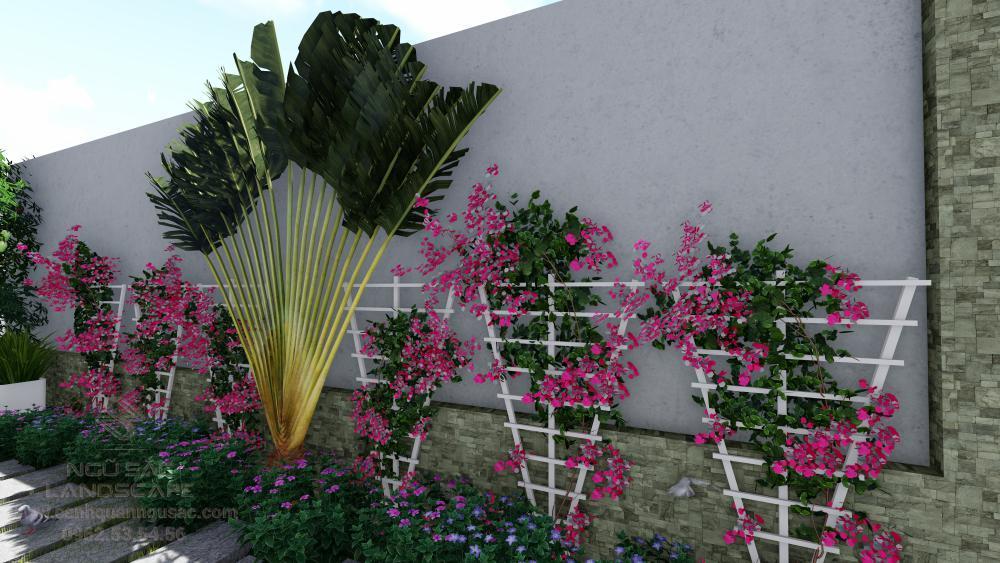 Thiết kế giàn hoa đẹp sân vườn