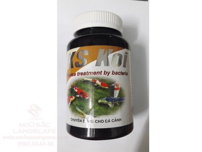 Thuốc chữa bệnh cá Koi