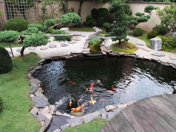 Vị trí hồ cá Koi tốt sẽ giúp mang lại tài lộc cho gia chủ