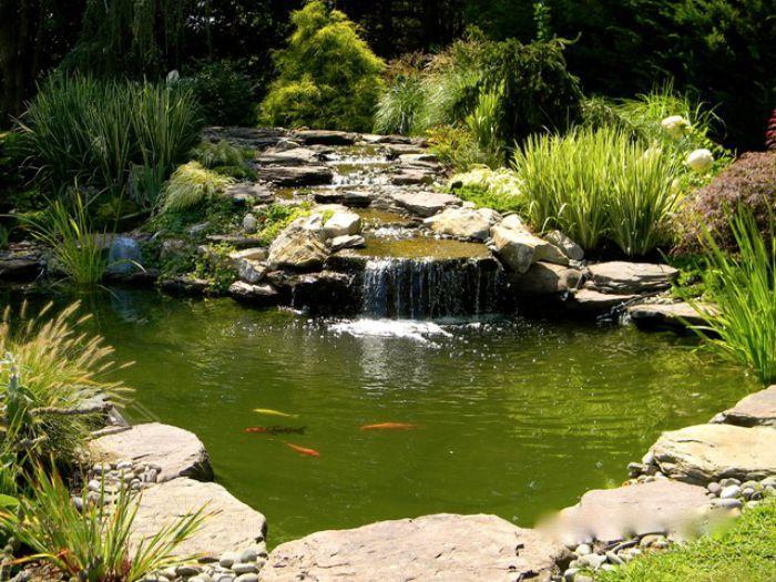 Tiểu cảnh thác nước hồ cá Koi