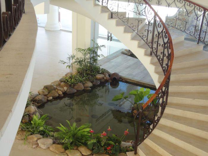 Hồ cá Koi dưới chân cầu thang