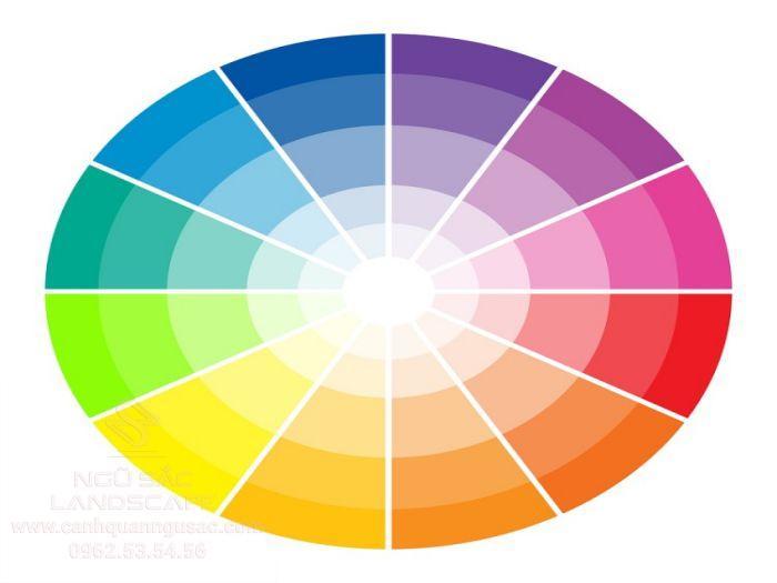Vòng tròn của bánh xe màu sắc