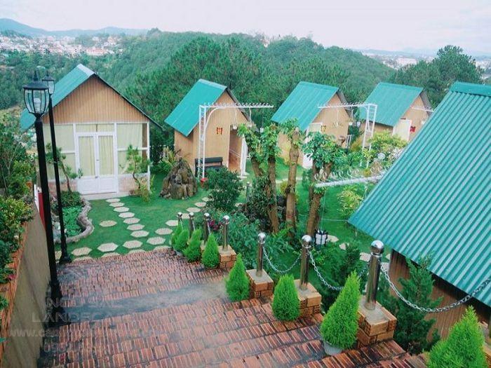 Đơn vị thiết kế sân vườn homestay chuyên nghiệp