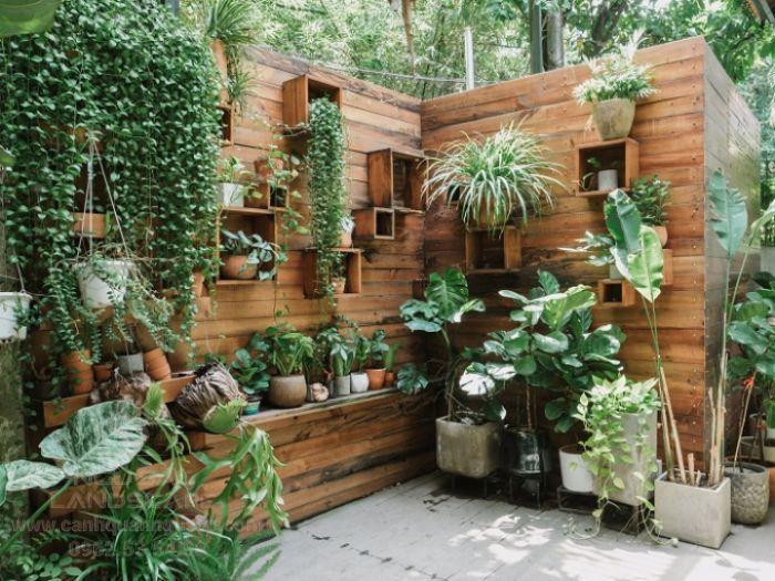 Một góc vườn xinh xắn với các chậu treo