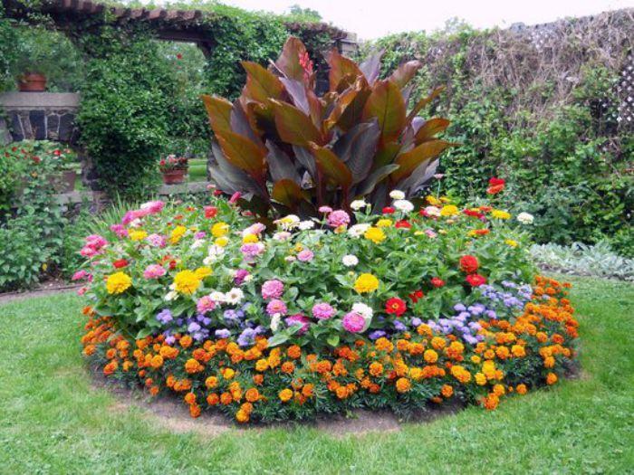Chọn những loại hoa phù hợp với khí hậu địa phương