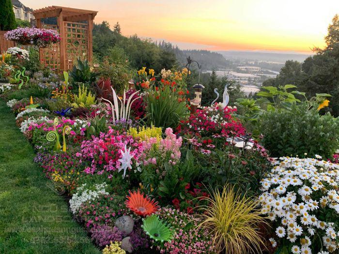 Phối hợp màu sắc trong vườn hoa sân vườn