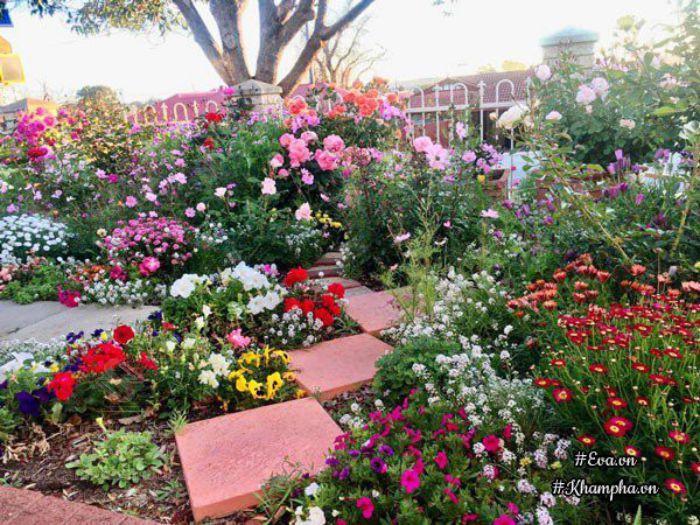 Vườn hoa ở lỗi đi sân vườn