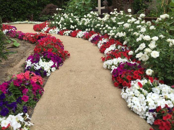 Trồng hoa thành viền ở sân vườn