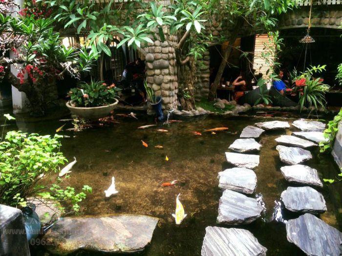 Oasis là quán cà phê cá Koi được nhiều người yêu thích