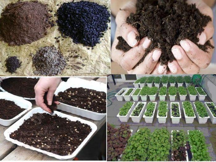 Công thức trộn đất trồng rau đủ dinh dưỡng trong một mùa