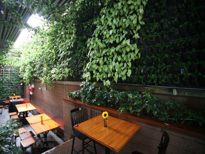 Mẫu tường đứng ở quán cà phê sân vườn