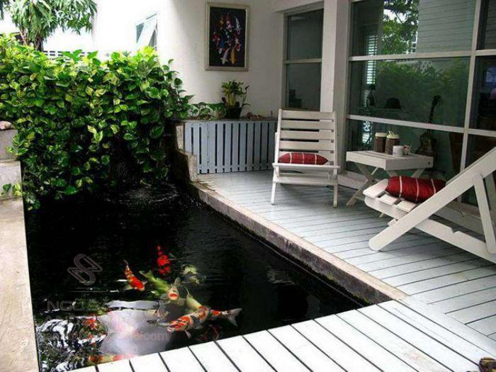 Mẫu hồ cá Koi mini trong sân vườn