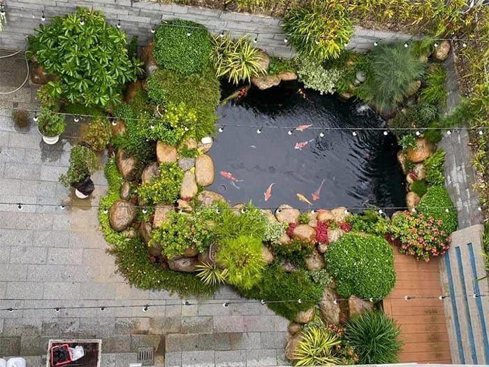Thiết kế hồ cá Koi trước nhà