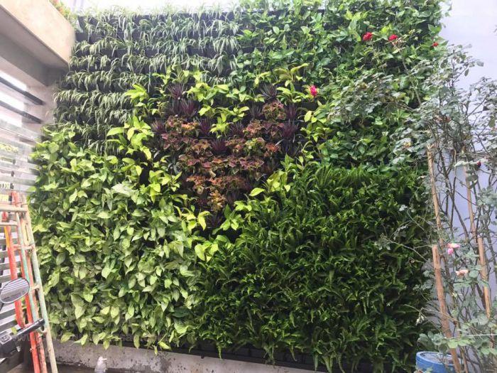 Thi công tường đứng hiện đại cho sân vườn
