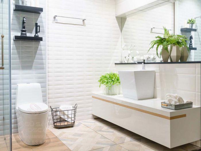 Phòng tắm ẩm móc nên cần có cây cảnh