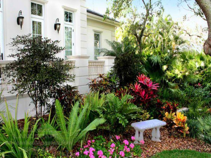 Sân vườn nhiệt đới luôn nhiều cây xanh và màu sắc