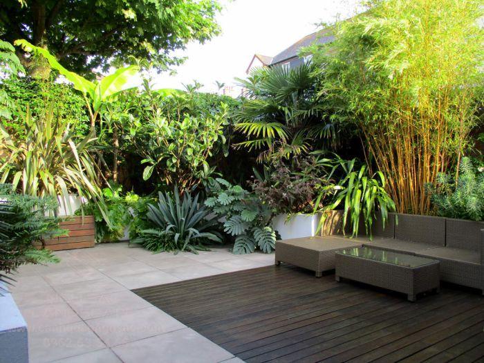 Lựa chọn sân vườn nhiệt đới giúp cải thiện chất lượng không khí