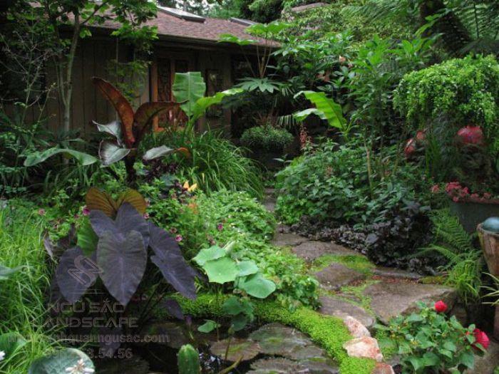 Góc sân vườn với cây trồng bắt mắt