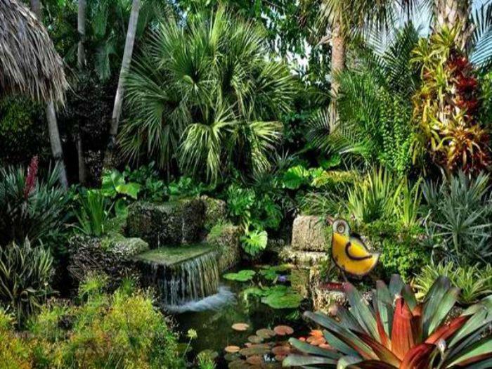 Góc tiểu cảnh nước và cây nhiệt đới