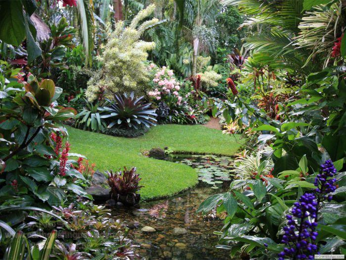 Sân vườn biệt thự theo phong cách nhiệt đới ấn tượng