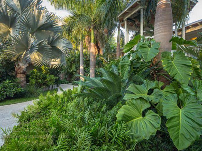 Phong cách vườn nhiệt đới độc đáo