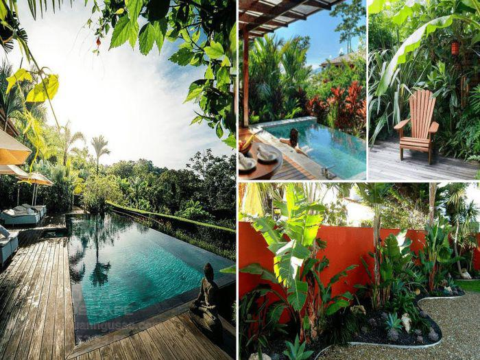 Ngũ Sắc chuyên thiết kế thi công vườn nhiệt đới