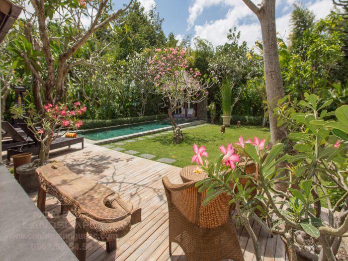 Sân vườn nhiệt đới với hồ bơi mini